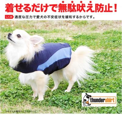 犬の洋服:サンダーシャツ!着るだけで不安を解消!